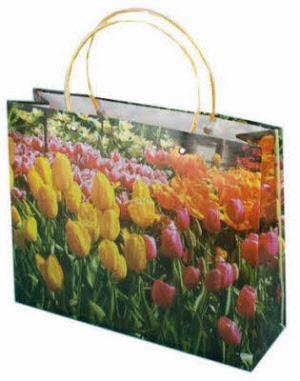 caf867baa01 Draagtas Tulpen, breed 33 x 26,5 x 10 cm